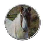 Sweet Connemera Pony Candy Tin