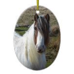 Sweet Connemera Pony Ceramic Ornament