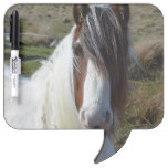 Sweet Connemera Pony Dry Erase Board