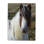 Sweet Connemera Pony Dry-Erase Board