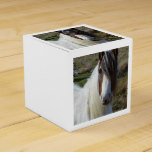 Sweet Connemera Pony Favor Box