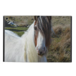 Sweet Connemera Pony iPad Air Covers