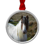 Sweet Connemera Pony Metal Ornament