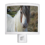Sweet Connemera Pony Night Light