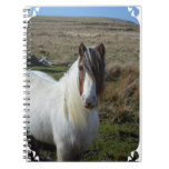 Sweet Connemera Pony Notebook