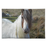 Sweet Connemera Pony Placemat