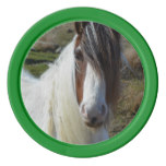 Sweet Connemera Pony Poker Chip Set