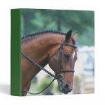 Sweet Morgan Horse Binder