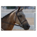 Sweet Roan Pony Cutting Board