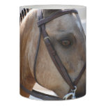 Sweet Roan Pony Flameless Candle