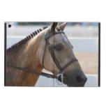 Sweet Roan Pony iPad Air Cover