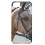 Sweet Roan Pony iPhone 5C Case