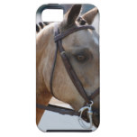 Sweet Roan Pony iPhone SE/5/5s Case