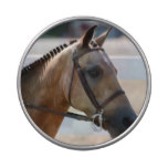 Sweet Roan Pony Jelly Belly Candy Tins
