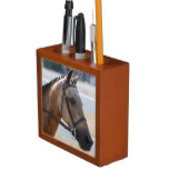 Sweet Roan Pony Pencil/Pen Holder