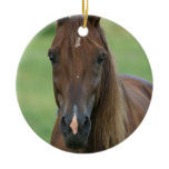 Thoroughbred Horse Photo Ornament